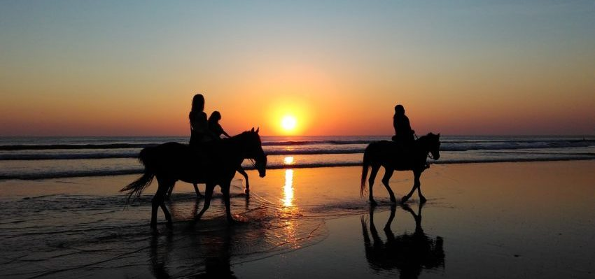 Horse back riding taghazout holiday surf star morocco